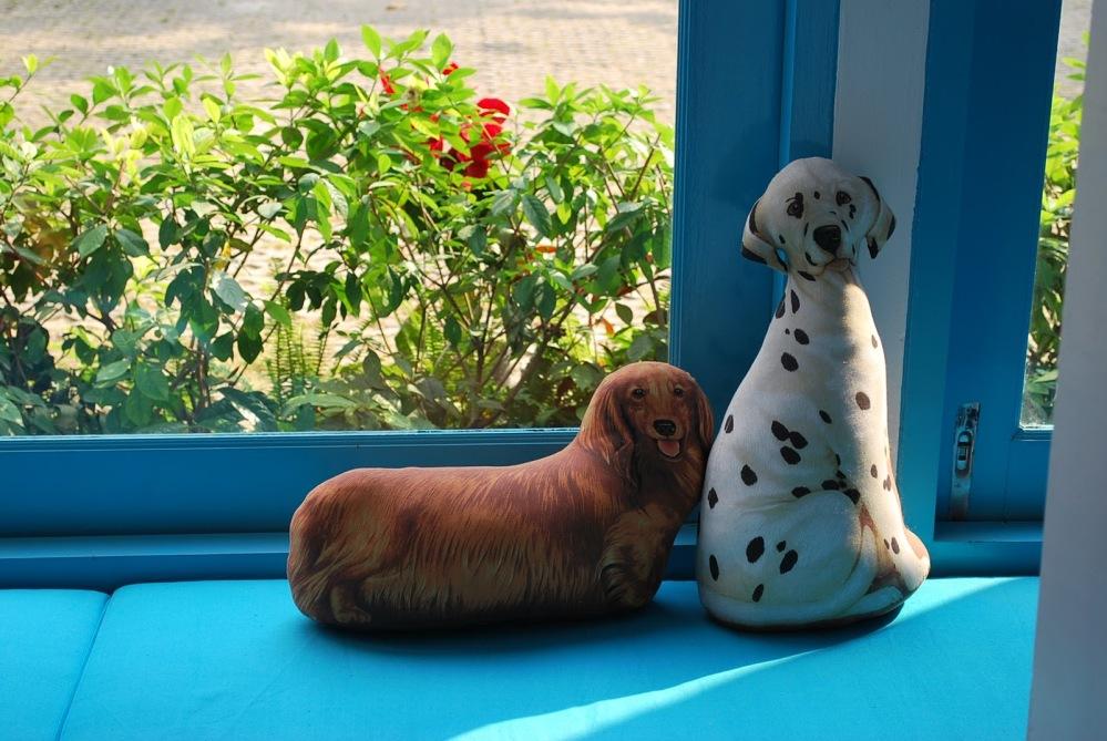 Dogs Swim, Me Eat : iTube at Sukhumvit 39  (4/6)